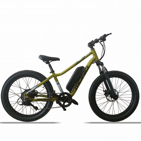 E-MONO 24″ ELECTRIC CRUISER BIKE SE-24B01